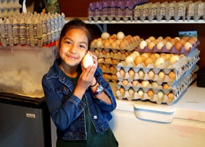 eggs_raschell_turkeyegg_630x451