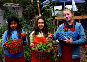 1_pistou_3girls_harvestbasil_630x451